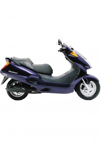 HONDA COPRIGAMBE SPECIFICO Honda PANTHEON 125/150 (fino al 2002 - Pro Leg C)